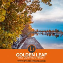 Golden Leaf – Free Lightroom Preset Download (zip)
