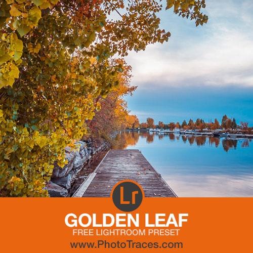 Golden Leaf - Free Lightroom Preset Download (zip) 1