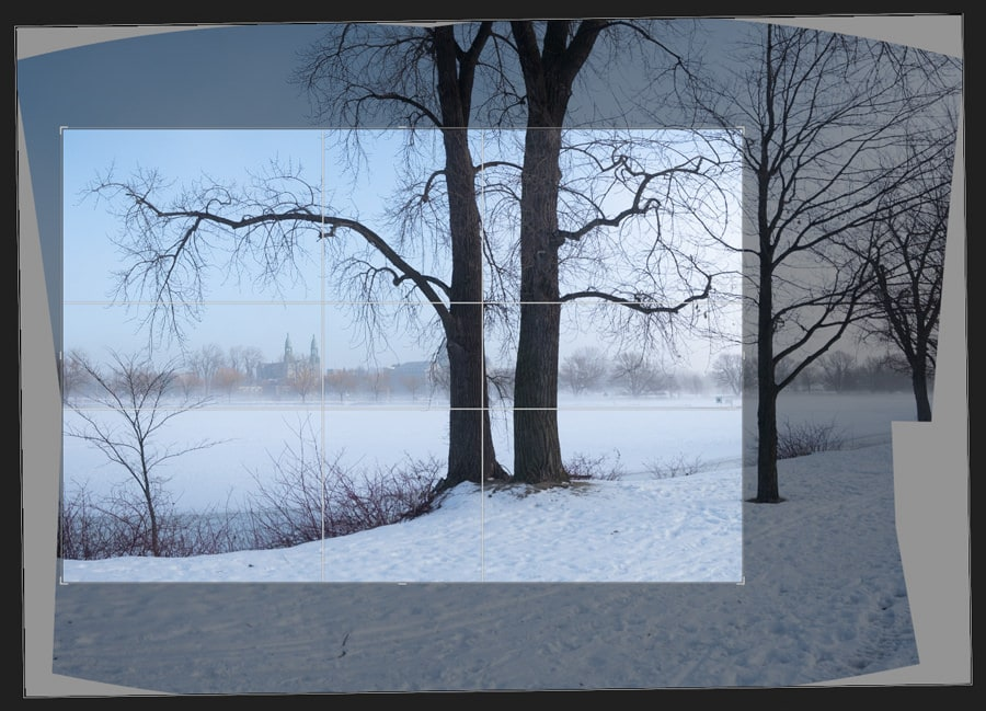 Foggy Winter Morning (Montreal) 10