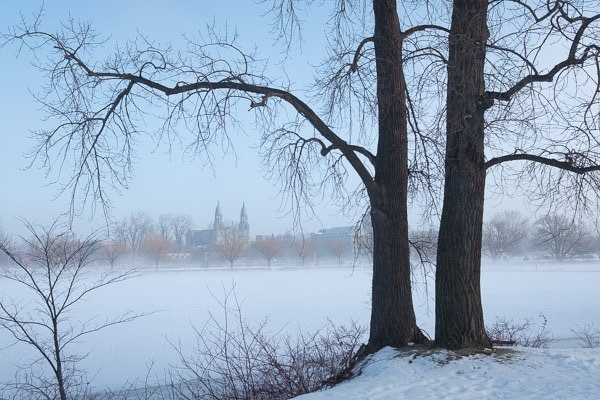 Foggy Winter Morning (Montreal) 5