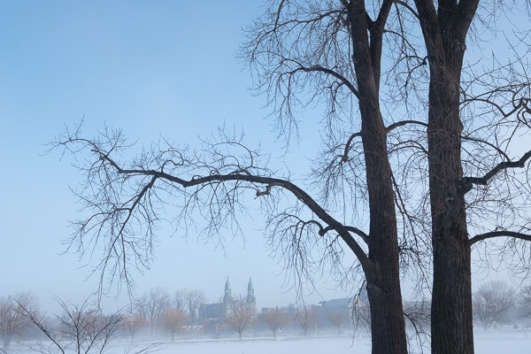 Foggy Winter Morning (Montreal) 7