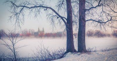 Foggy Winter Morning (Montreal)