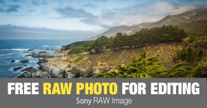 Free RAW Photo: Big Sur (California)