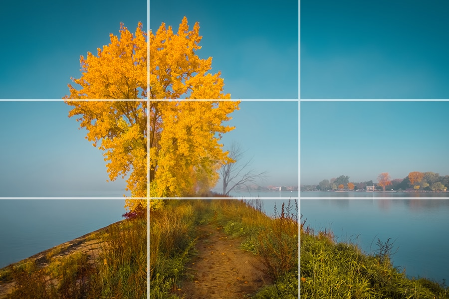 Rule of Thirds in Photography Explained (Examples + Visuals) 5