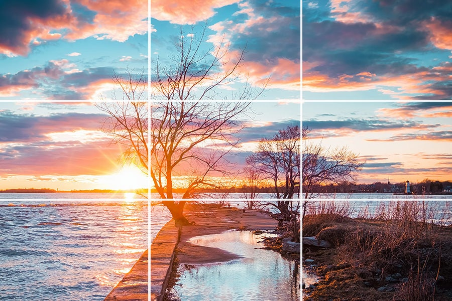 Rule of Thirds in Photography Explained (Examples + Visuals) 1