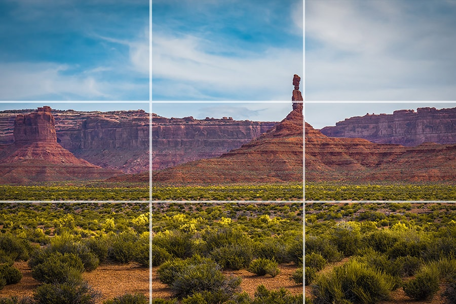 Rule of Thirds in Photography Explained (Examples + Visuals) 7