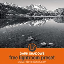 Dark Shadows: Free Black and White Lightroom Preset