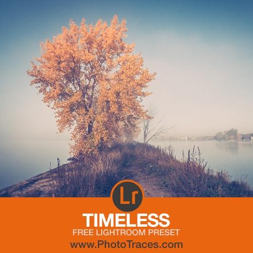 Timeless: Free Vintage Lightroom Preset 1