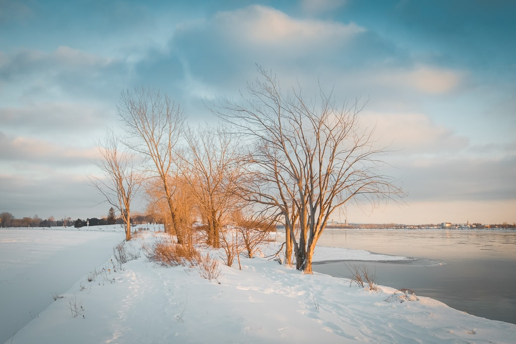Snowy Day: Free Snow Lightroom Preset 5