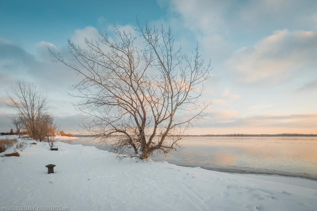 Snowy Day: Free Snow Lightroom Preset 8