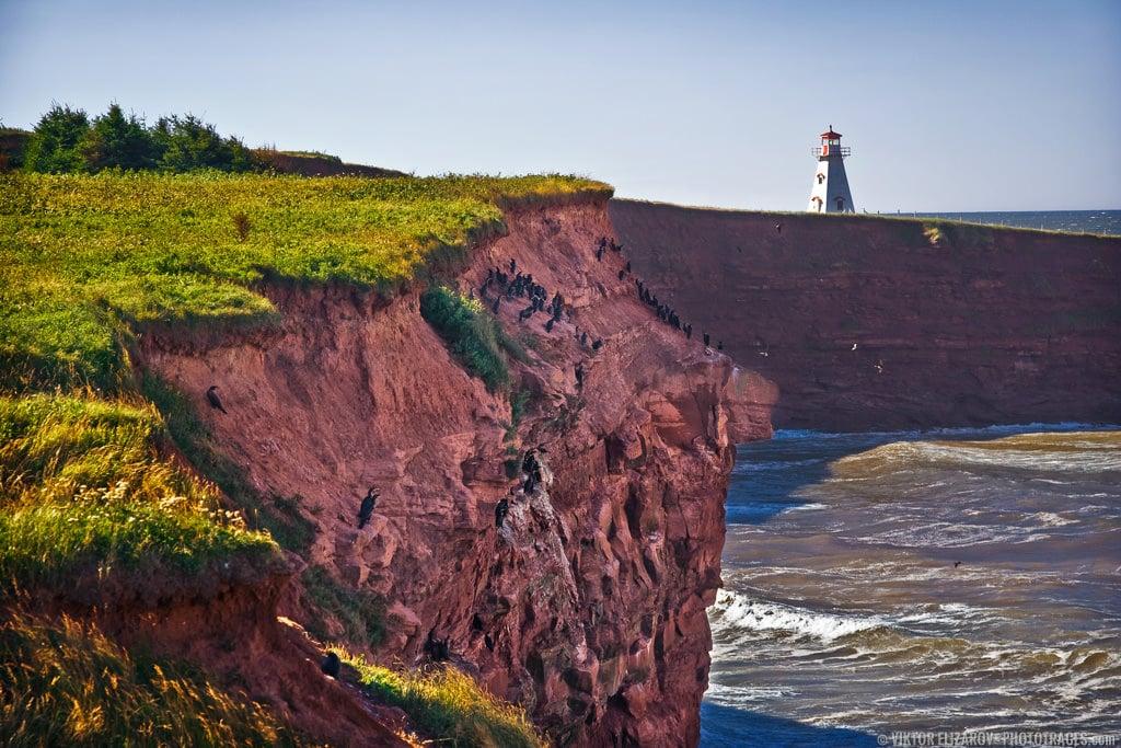 Cape Tryon - Prince Edward Island 4
