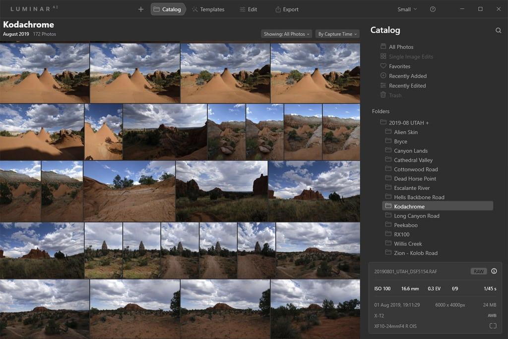 Best Photo Organizing Software: Luminar AI