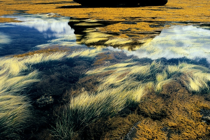 Famous Landscape Photographers and Their Photos 17