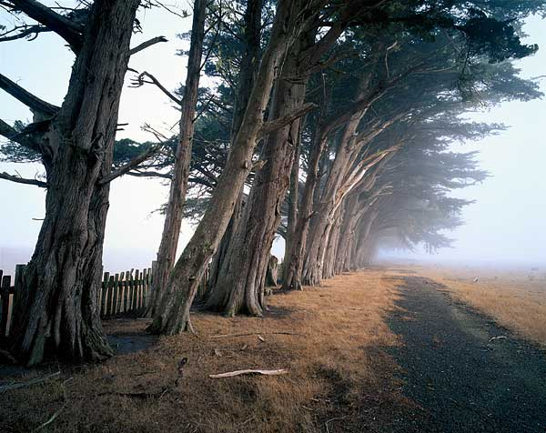 Famous Landscape Photographers and Their Photos 18
